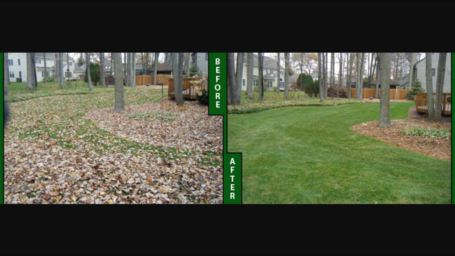 Cleveland Ohio Fall Yard Maintenance by H&M Landscaping