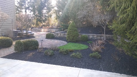 Cleveland's H&M Landscaping Pruning & Edging Services