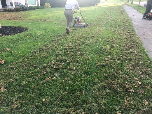 Cleveland Area Lawn Dethaching by H&M Landscaping