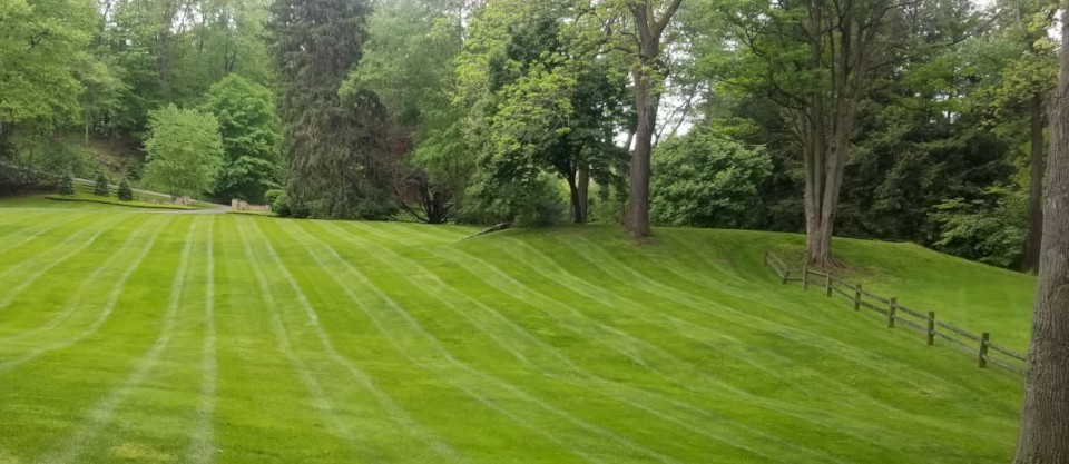 Clevelands H&M Landscaping: Lawn Mowing Services