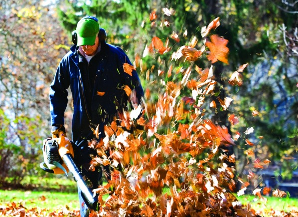 Cleveland Landscaping Fall Clean Up Tips