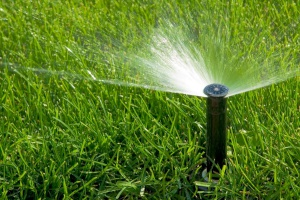 Cleveland Area Landscaping Irrigation and Landscape Lighting Services