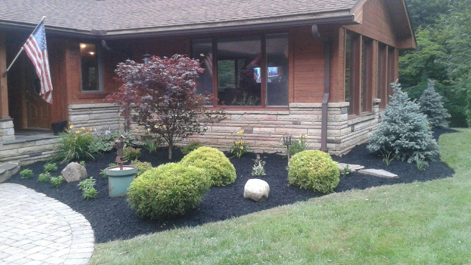 Mid-Summer Landscape Pruning of Trees and Shrubs in Northeast Ohio