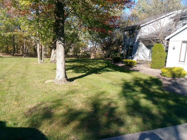 Fall Yard Leaf Blowing by H&M Landscaping