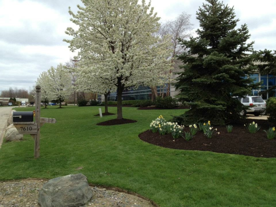 H&M Landscaping Maintenance Mulching Clean-up in Cleveland