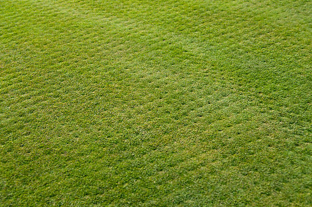 Landscape Lawn & Turf Aeration, Irrigation & Fertilization for Cleveland Ohio by H&M Landscaping
