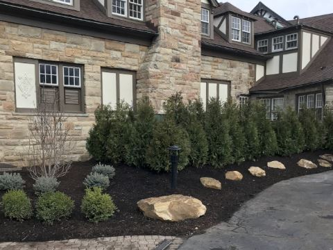 H&M Landscaping Project of the Week